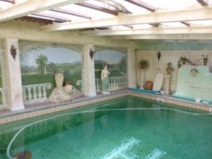 The delightful swimming pool
