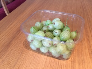Yorkshire gooseberries