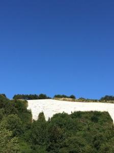 White Horse at Sutton Bank