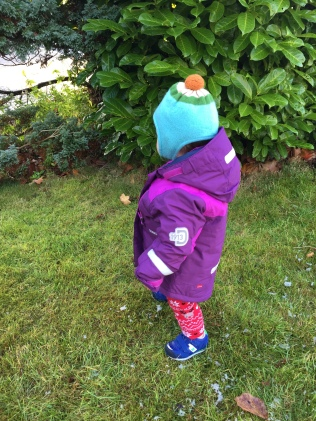 There are lots of jackets on the market for toddlers, but the Didriksons Hamres kids' jacket not only offers warmth in abundance but is also waterproof. It even has bands on to help make it more visible in the evenings.